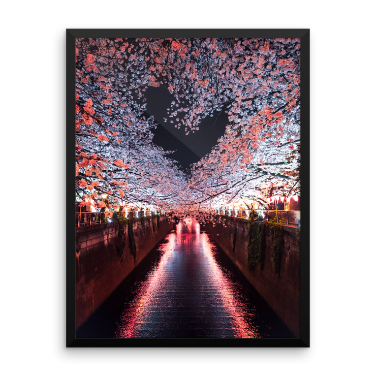 Japan Cherry Blossom Heart