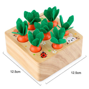 Wooden Montessori Infant Puzzle - Jala & Noor Unique Gardening and Home Products