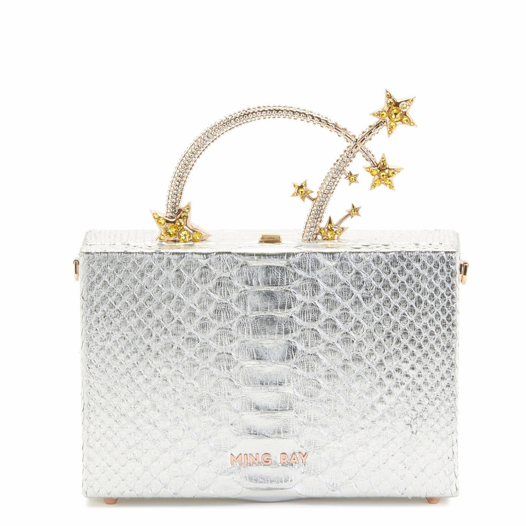 Silver Starburst Dione Box Bag