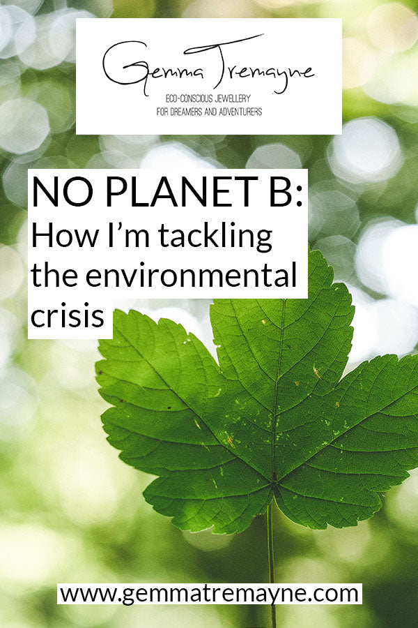 No planet B: How I'm tackling the environmental crisis