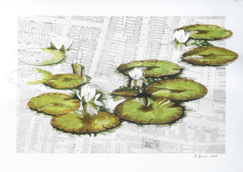 Waterlillies painting by London artist, Sophie Connor