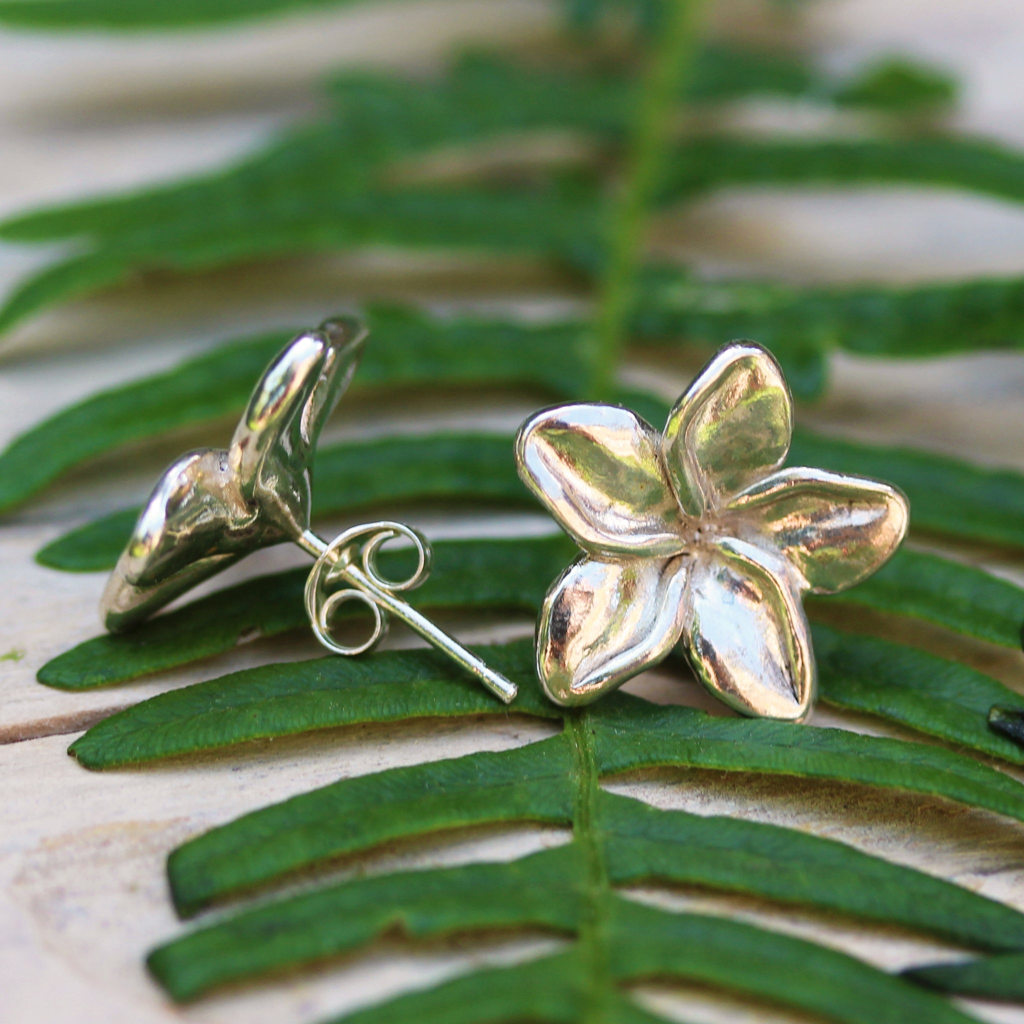 Plumeria flower stud earrings, handmade in 100% recycled sterling silver, by Gemma Tremayne Jewellery