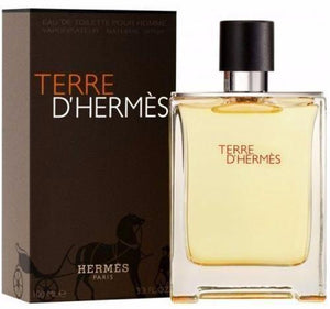 Terre D Hermes Caballero Hermes 100 ml Edt Spray | PriceOnLine