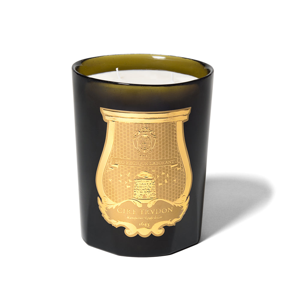 Ernesto Candle (Leather and Tobacco) by Cire Trudon