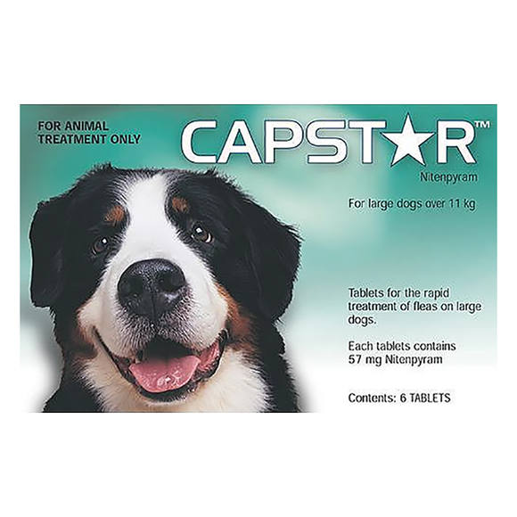 Capstar Large Dogs (24hours)