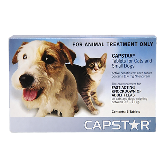 Capstar Cats & Small dogs (24hours)