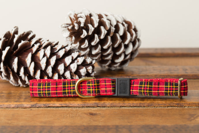 Red Tartan Cat Collar