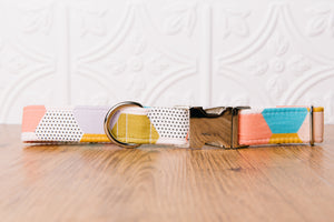 Hexagon Dog Collar