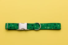 Load image into Gallery viewer, Peter Pan Inspired Dog Collar