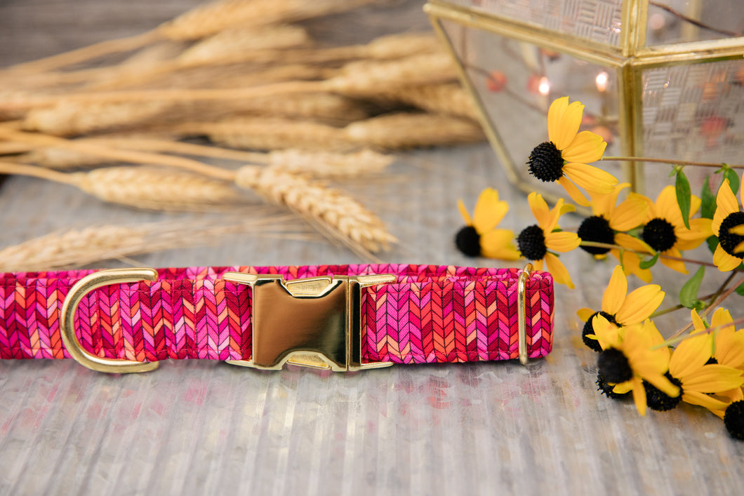 Hot Pink Herringbone Dog Collar