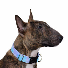 Load image into Gallery viewer, Frozen Inspired Dog Collar