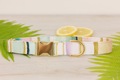 Watercolour Striped Dog Collar