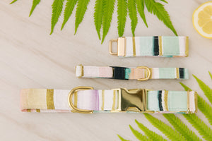 Jewel Tone Stripes Cat Collar
