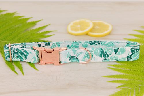 Palm Leaf Dog Collar