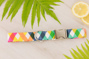 Rainbow Plaid Dog Collar