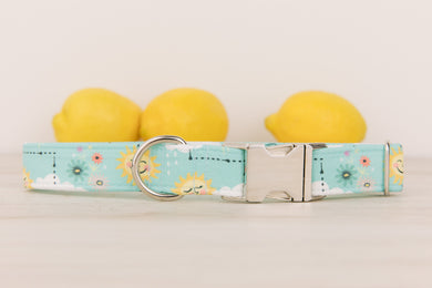 Sunshine Dog Collar
