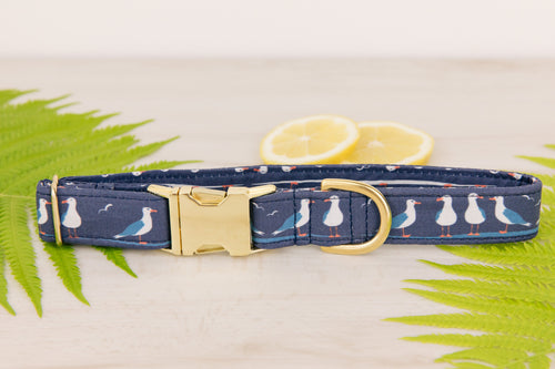 Seagull Dog Collar