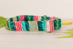 Tropical Bermuda Dog Collar