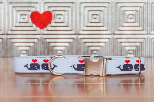 Whales and Hearts Dog Collar