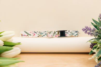 Blush Floral Breakaway Cat Collar