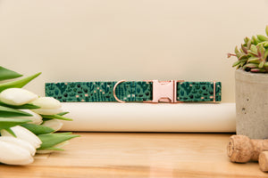 Green Cactus Dog Collar with Rose Gold Buckle