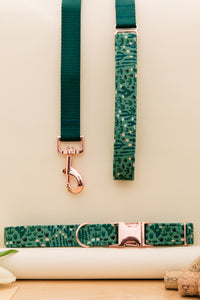 Green Cactus Customizable Matching Dog Leash