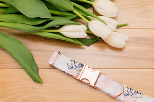 Pastel Hexagon, Floral and Striped Dog Collar