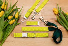 Load image into Gallery viewer, Neon Yellow-Green Geometric Matching Dog Leash