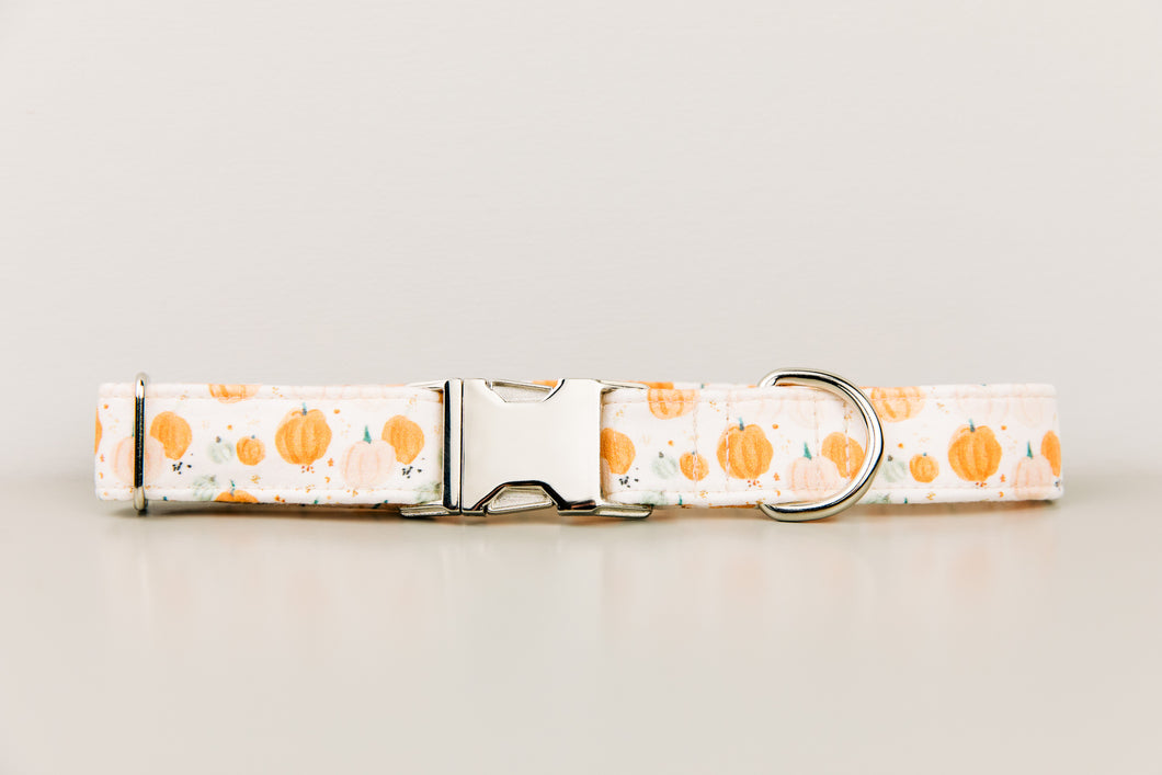 Watercolour Pumpkins Halloween Dog Collar
