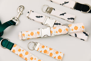 Off-White Bats Halloween Dog Collar