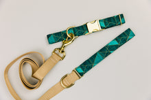 Load image into Gallery viewer, Teal Green Geometric Matching Dog Leash