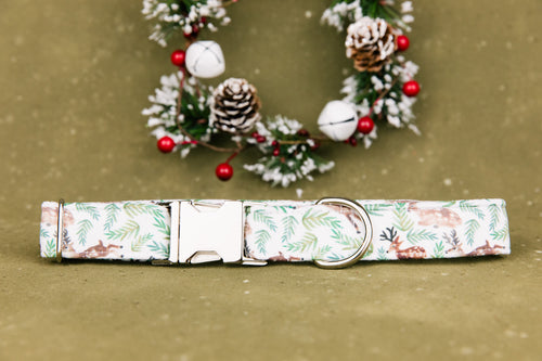 Deer in the Pine Dog Collar