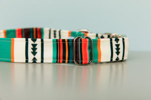 Desert Stripes Water Resistant Dog Collar