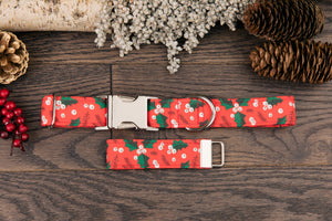 Red Holly Winter Dog Collar