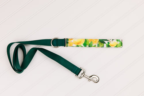 Lemons Customizable Matching Dog Leash