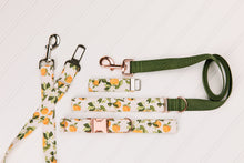 Load image into Gallery viewer, Clementines Customizable Matching Dog Leash
