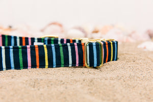 Navy Striped Dog Collar