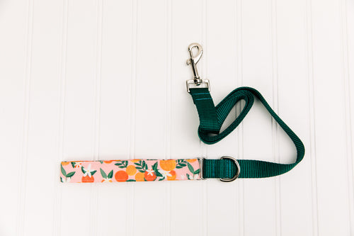 Happy Oranges Matching Dog Leash