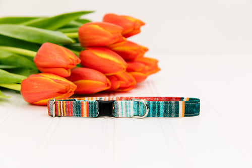 Southwest Stripes Breakaway Cat Collar