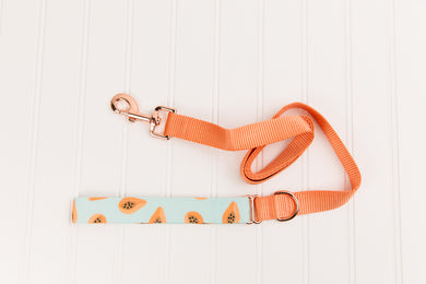 Coral Papaya Matching Dog Leash
