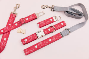 Little Love Red Valentine's Matching Dog Leash