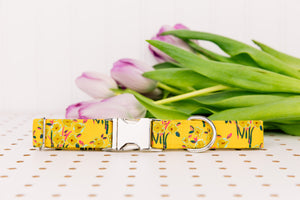 Mustard Yellow Floral Bundles Dog Collar