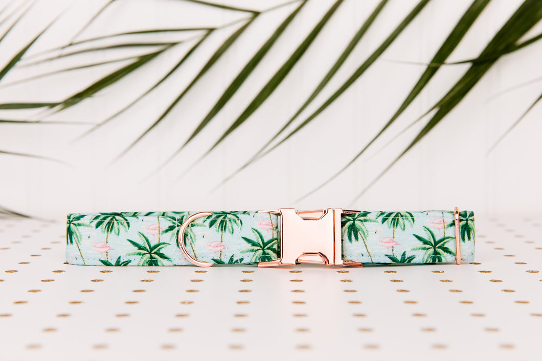 Tropical Palm Trees and Flamingos Dog Collar