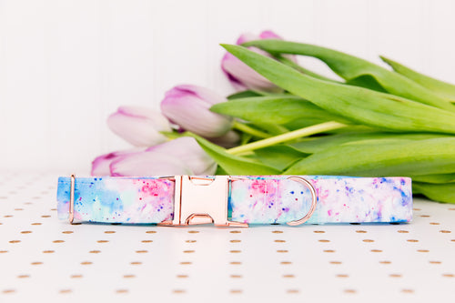 Water Resistant Tie-Dye Splatter Dog Collar
