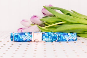 Water Resistant Galaxy Geometric Blue Dog Collar