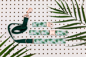 Tropical Palm Trees and Flamingos Matching Dog Leash