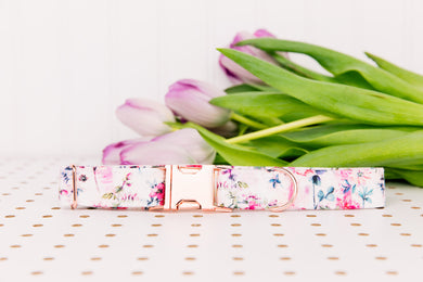 Rose Gold Watercolour Florals Dog Collar