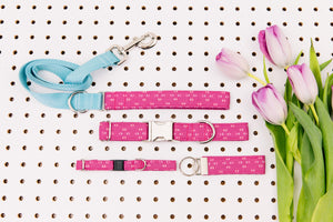 Magenta Arrows Minimalist Matching Dog Leash
