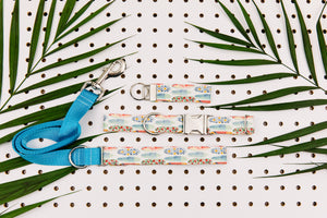 Tropical Surf Boards Matching Dog Leash