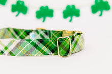 Load image into Gallery viewer, St Patrick's Day Green, White and Gold Dog Collar